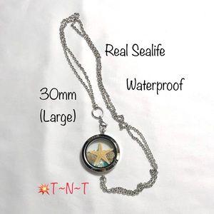 Real Sea Life Waterproof Locket